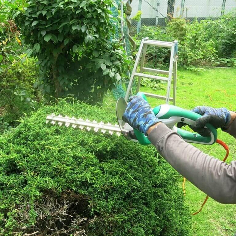 庭の草刈りをするスタッフ